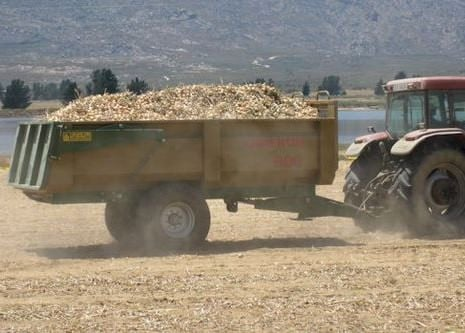 Farming, tractor, potatoes, onions, agriculture